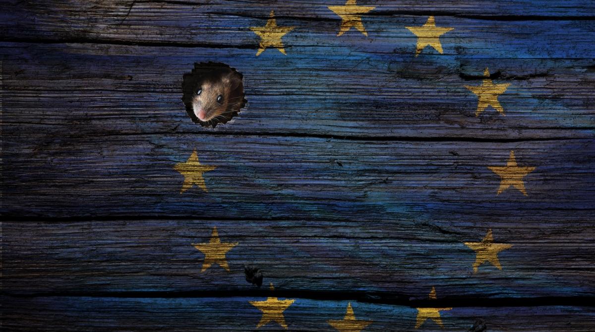 Brexit lipan